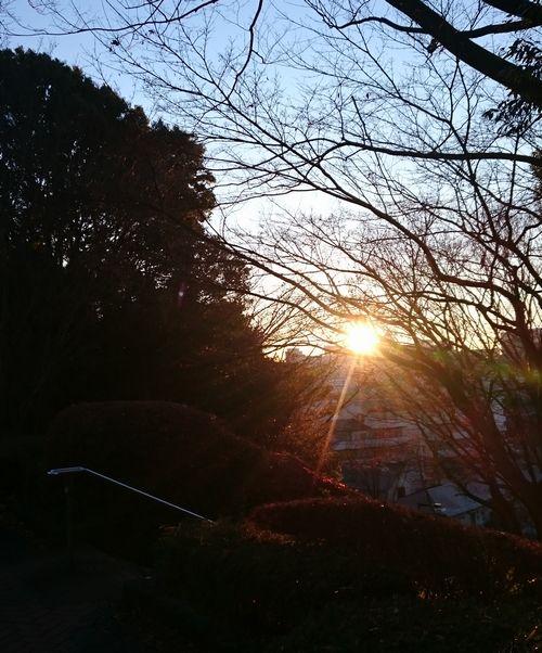 2016年元旦日の出.jpg
