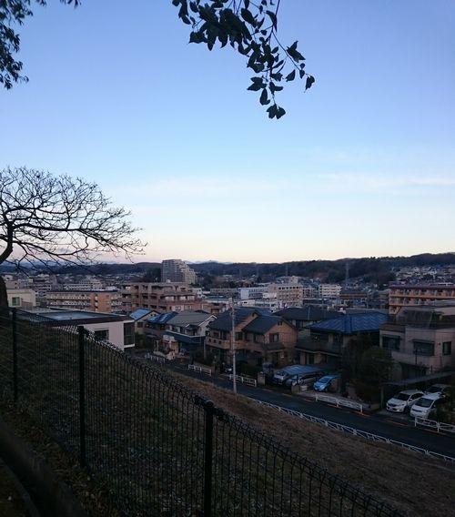 2月の朝.jpg