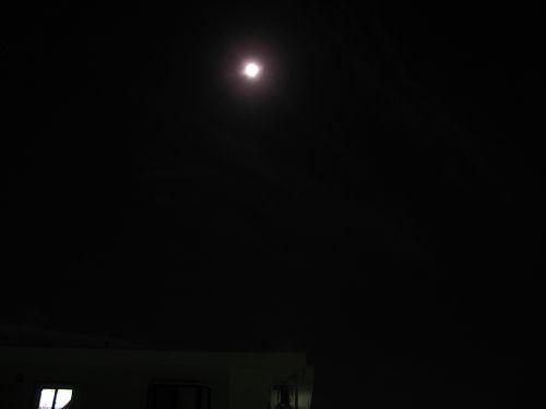 仲秋の名月.jpg